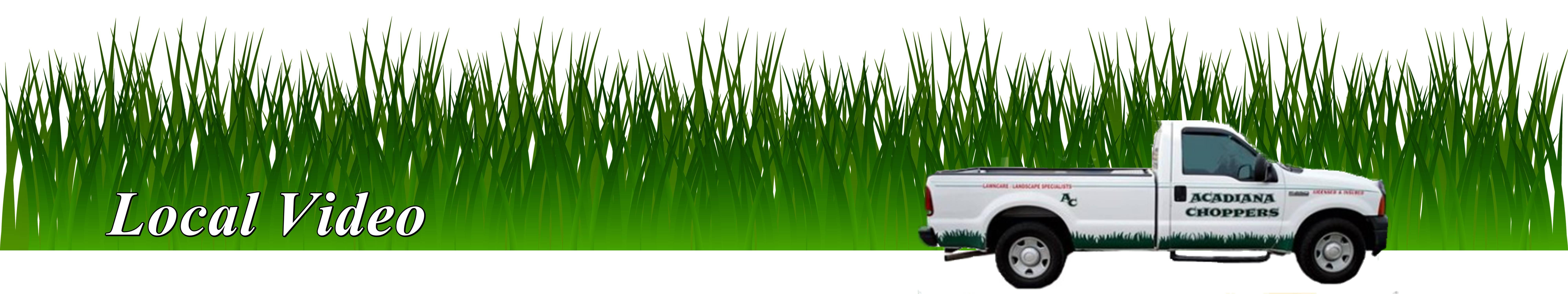Lawn & Landscaping Video Lafayette LA