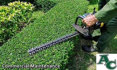 commercial lawn maintenance and keep up lafayette la