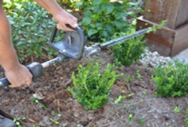 hedging and clean up lafayette la
