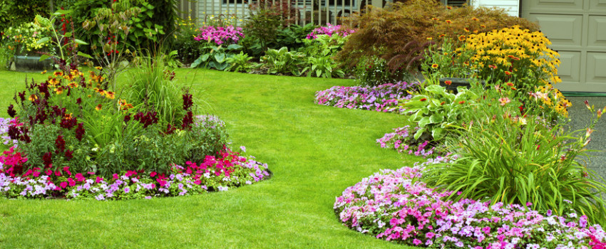 Acadiana Choppers: Lawn Care & Landscaping in Lafayette LA & Lake Charles LA - Acadiana Choppers: Lawn Care & Landscaping In Lafayette LA & Lake