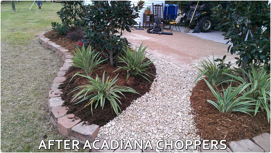 AFTER ACADIANA CHOPPERS LAWN CARE LAFAYETTE, LA